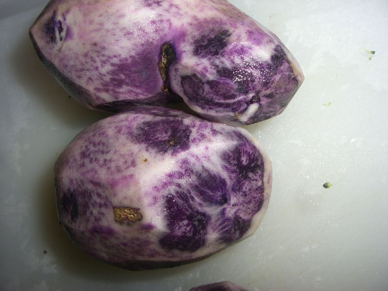 Bluepotato1